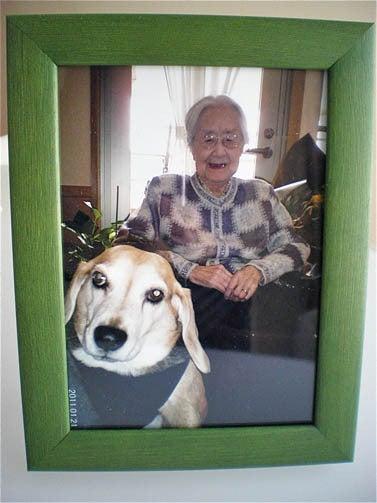 漫画家の犬たち-記念写真