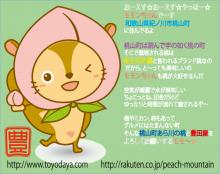 $☆モモンちゃん☆のめっちゃ桃が大好きブログ