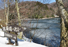 白神山地ツアーで能代山本地区の活性化すっぺ-2011年十二湖オープン4
