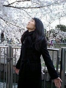 「営業の魔女」の「感動仕事」記-桜の木の下で