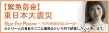 ガイアモーレ株式会社 公式ブログ