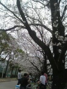 わかめの気まぐれBlog-2011040211580000.jpg