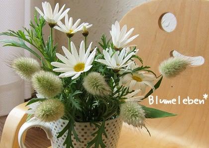 お花屋さんのなり方/働き方-マーガレットとラグラスで