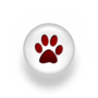 Dog rescue…