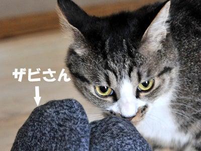 啓介・あつみ♂のふたりごと-040501