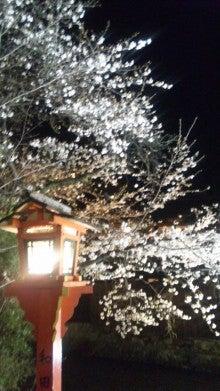 祇園の住人 お水編-110406_2027~01.jpg