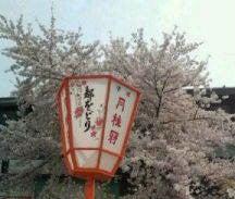 *花織千桜バレエスタジオ*-20110411132958.jpg