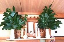 Natural Kitchen-神棚
