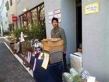 $ちびログ!-2011目黒川桜