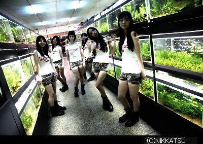 映画の感想文日記-coldfish2