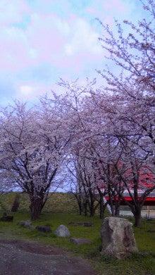$humannoteのブログ-桜