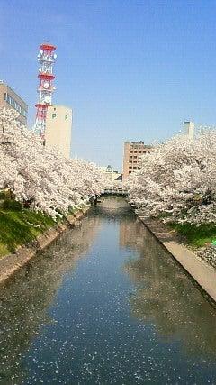 小春にっき-201104141335000.jpg