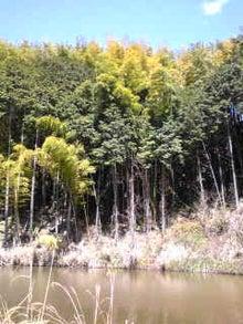 オトメゴコロの「泉州おむすび」-Image1018.jpg