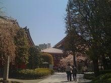 府中整体院・バリムーンのブログ-浅草寺
