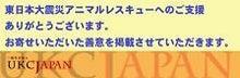 愛しい大切な命-社)UKC JAPANアニマルレスキュー