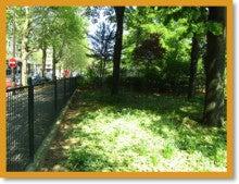 パリでお散歩