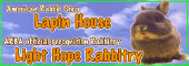 Lapin House ~American Rabbit Shop~ のブログ