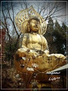 Nagano Life**-十二支の守り本尊