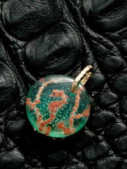 1cmの宇宙 ガラス作家のブログ-ピグミーシーホース002-2