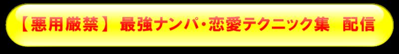 $◆ 悪用厳禁 ◆ 最強ナンパテクニック <ナンパガンバ>