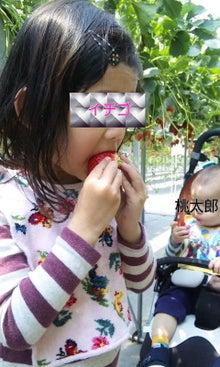 苺ママのひとりごと。-110429_1241~010001.jpg