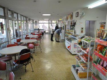 横浜発 驢馬人の美食な日々-Paeonia01