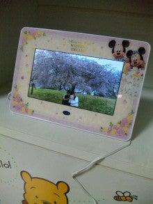 TOKYO Disney RESORT LIFE-DVC00072.jpg