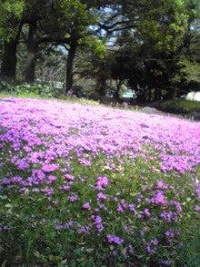 アロマとシータヒーリングでHappyを引寄せ☆ヒーリングサロン ルブラン 東京・目黒-自然教育園