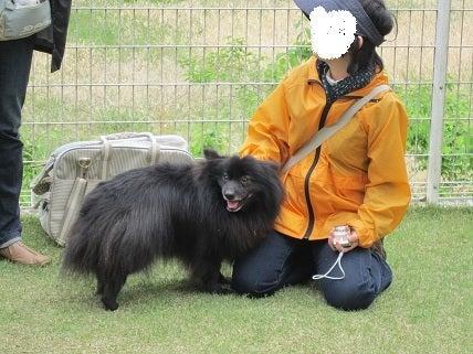 はっちゃけ すばるん!!