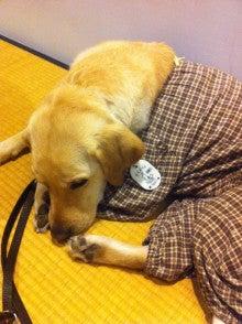 $高橋ヒロキ オフィシャルブログ Powered by アメブロ-盲導犬サニーちゃん