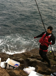 $岩本壮一郎の「鳴かぬなら鳴かせてみせようホトトギス」-危うく海に・・・