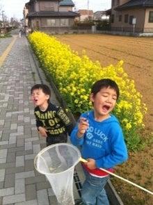 tomoとharuとママと(パパ)の海外生活-tukusi