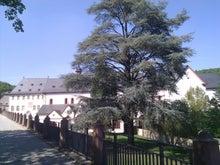 まえだのプログレッシブドイツ生活-0423 klostereberbach1