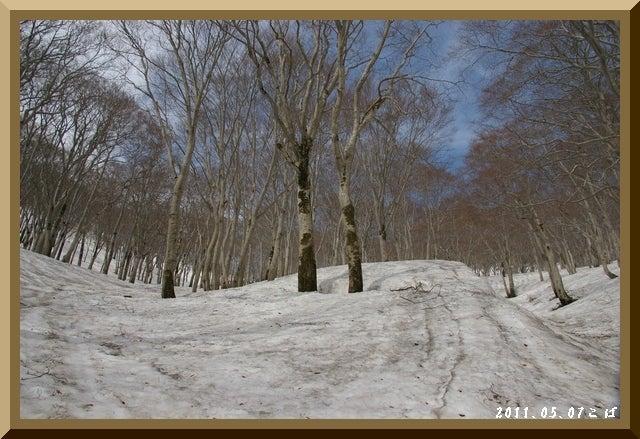 ロフトで綴る山と山スキー-0507_0908