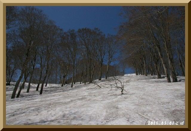 ロフトで綴る山と山スキー-0507_1026