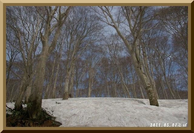 ロフトで綴る山と山スキー-0507_0903