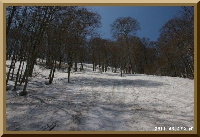 ロフトで綴る山と山スキー-0507_1032