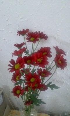 お花屋さんのなり方/働き方-110509_1018~01.jpg