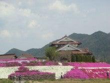 手軽に登れて満足度100%の山-芝桜2