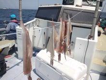 マサの釣りライフ-2011-05-08 11.08.10.jpg2011-05-08 11.08.10.jpg
