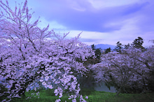 $写真家 谷角 靖オフィシャルブログ「オーロラの降る街 -谷角劇場-」Powered by Ameba オーロラの写真など -hirosaki2