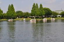microcosmos B-水上公園22