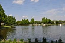 microcosmos B-水上公園20
