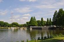 microcosmos B-水上公園21