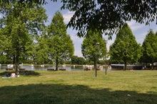 microcosmos B-水上公園18