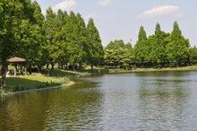 microcosmos B-水上公園23