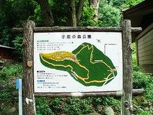 東條的世界最古の国へようこそ-伊豆山神社6