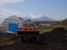 仙台で脱サラアラサー「農業はじめます!」農家研修1年目編