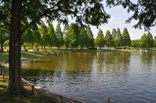 microcosmos B-水上公園36