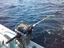 マサの釣りライフ
